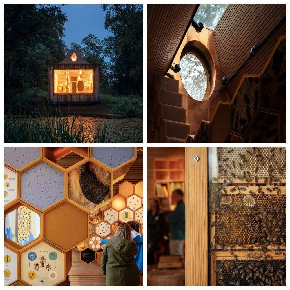 Бджолиний дім
