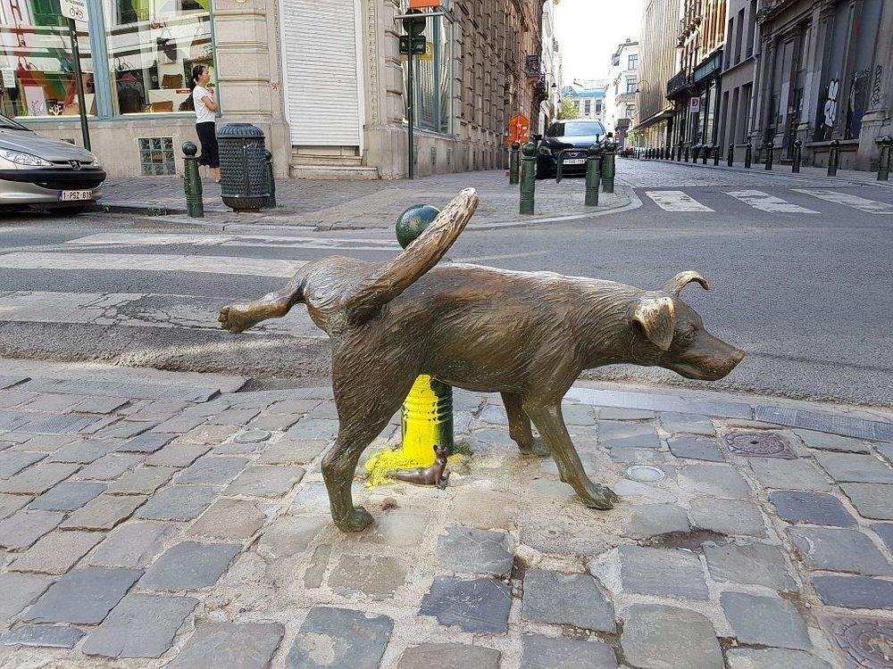 Памятник собаке, которая писает