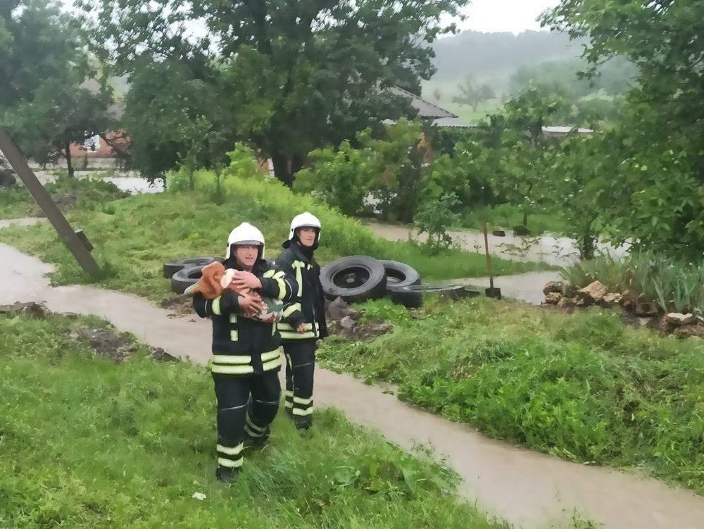 Місцевим жителям допомогли евакуювати тварин
