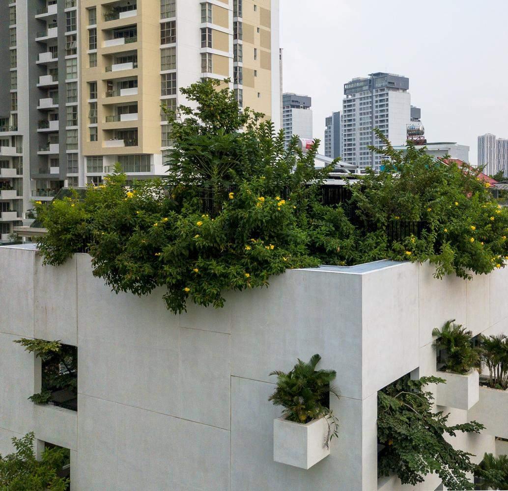 Зелені насадження у кужному куточку будинку / Фото Archdaily