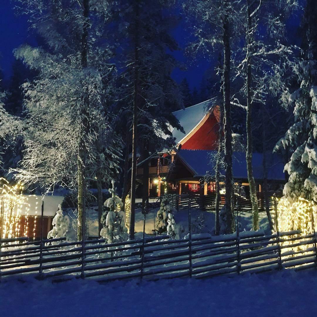 Вигляд на будиночок Tomte із лісу / Фото tomteland.se