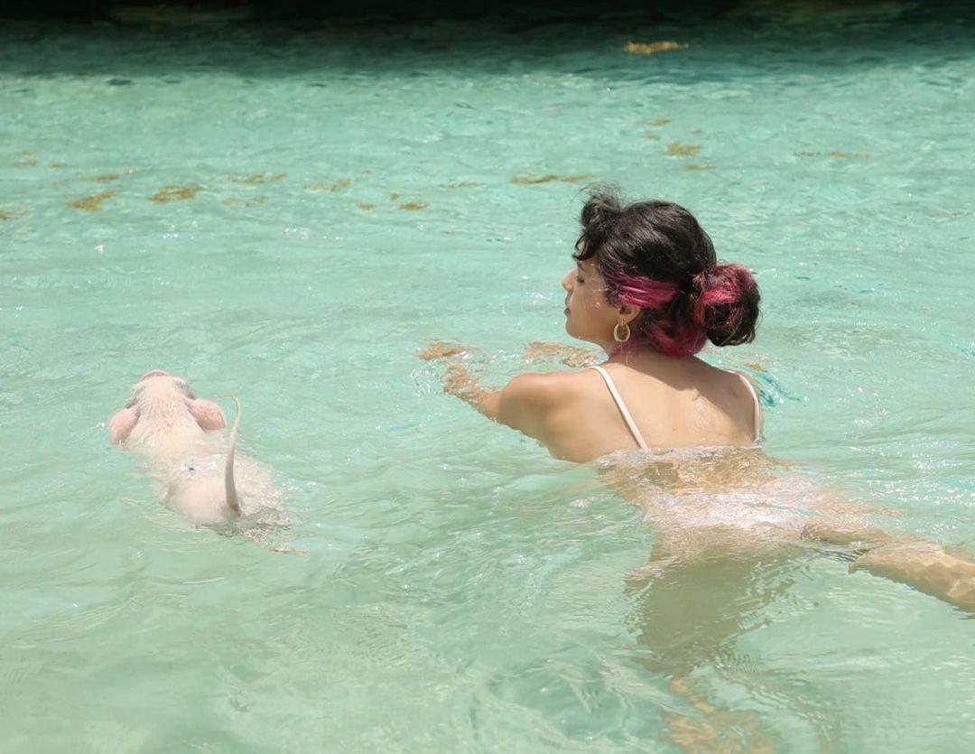 Мішель Андраде поплавала зі свинями