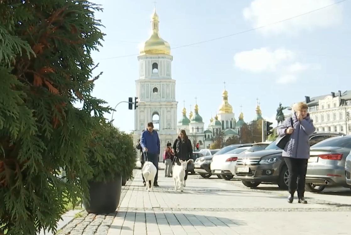 Зіта й Гостроріжка гуляють Києвом