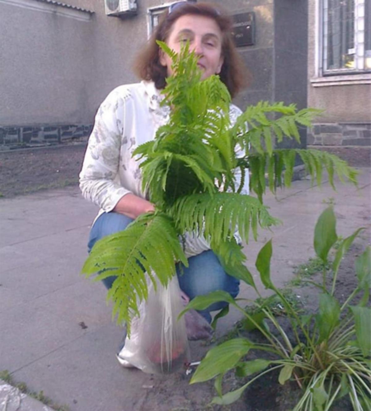 Смерть жінки в Коцюбинському, Неля Кандаурова померла у швидкій