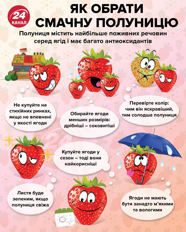 Як обрати смачну полуницю / Інфографіка 24 каналу