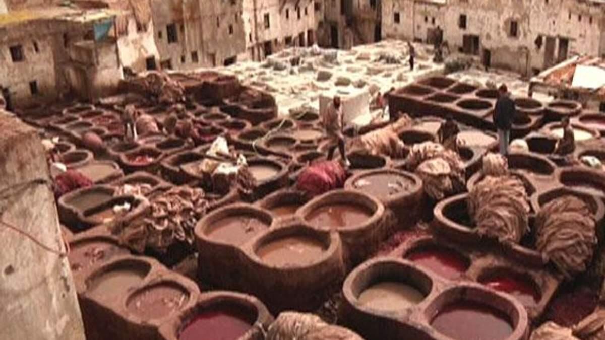 Фес - марокканский город традиций и образования