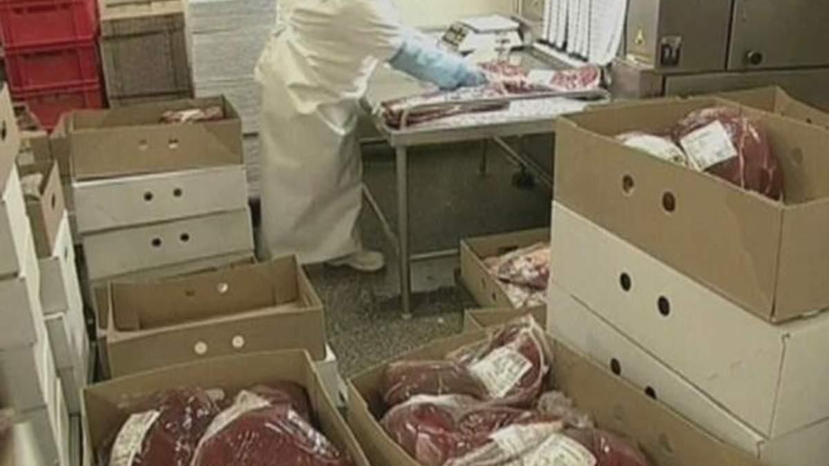 У 5% європейської яловичини є конина, - дослідження