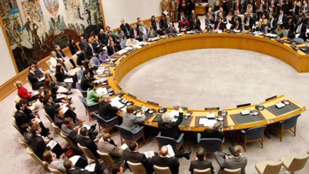 Совбез ООН: все согласились, что на востоке действуют профессиональные бойцы, кроме России
