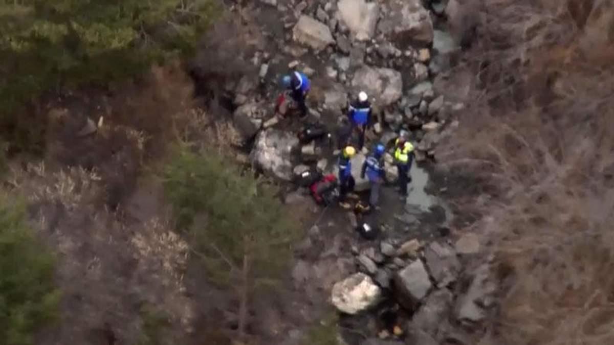 Пилот Airbus А320 преднамеренно разбил самолет, — расследование