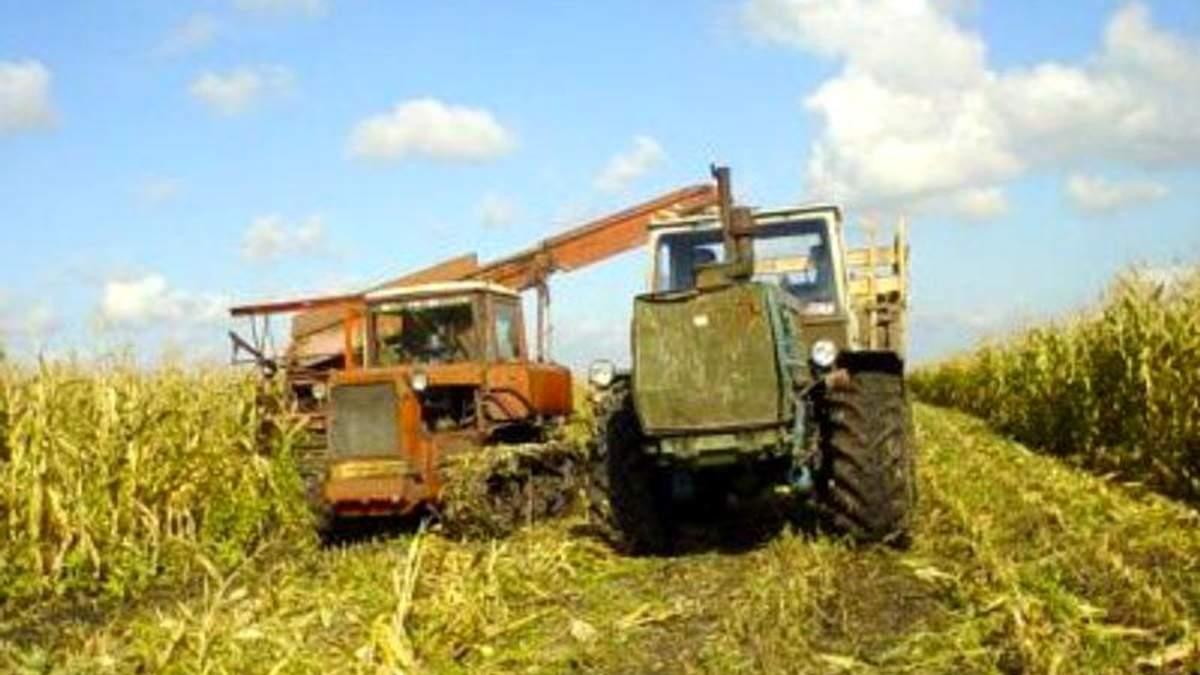 Как выживают сельхозпроизводители в зоне АТО?