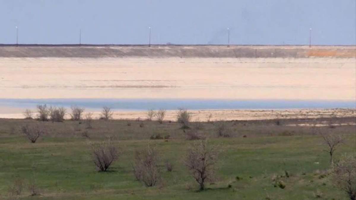 Крыму грозит глобальное уничтожение экосистемы