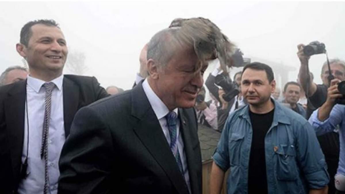 Птица атаковала президента Турции