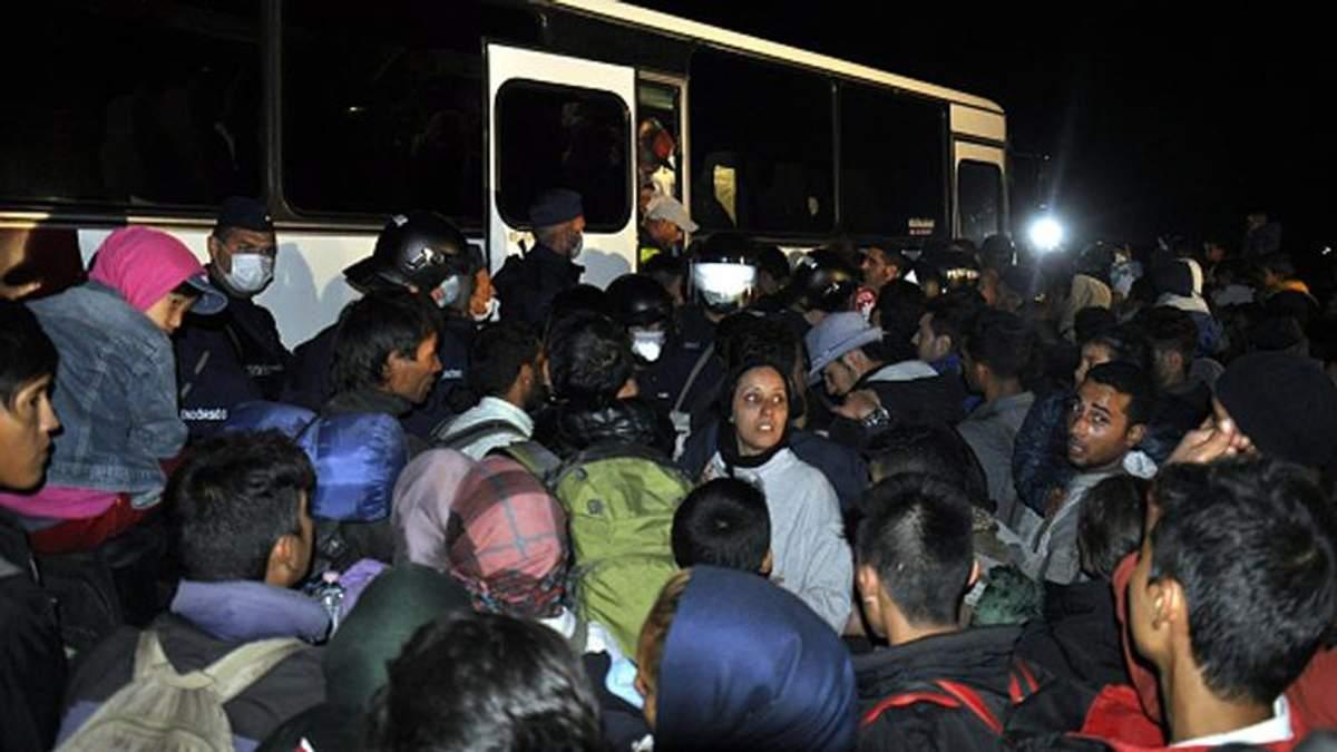 Сирийских беженцев нужно принимать также и в Украине