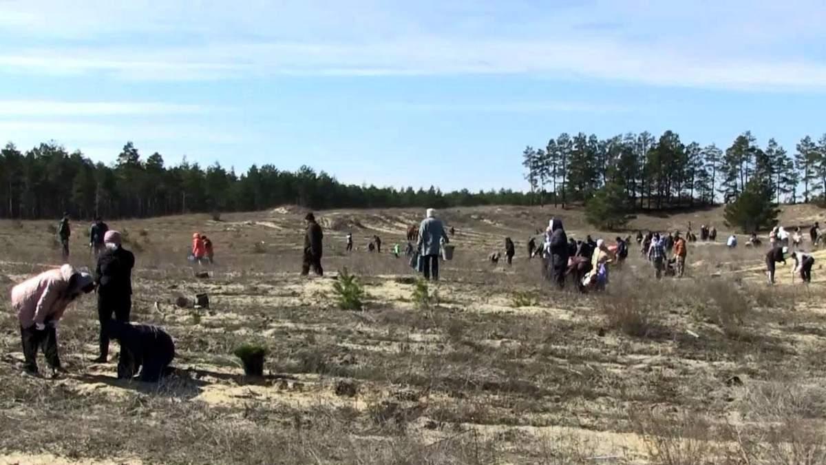 В Херсонской области люди спасают территорию от наступления песков