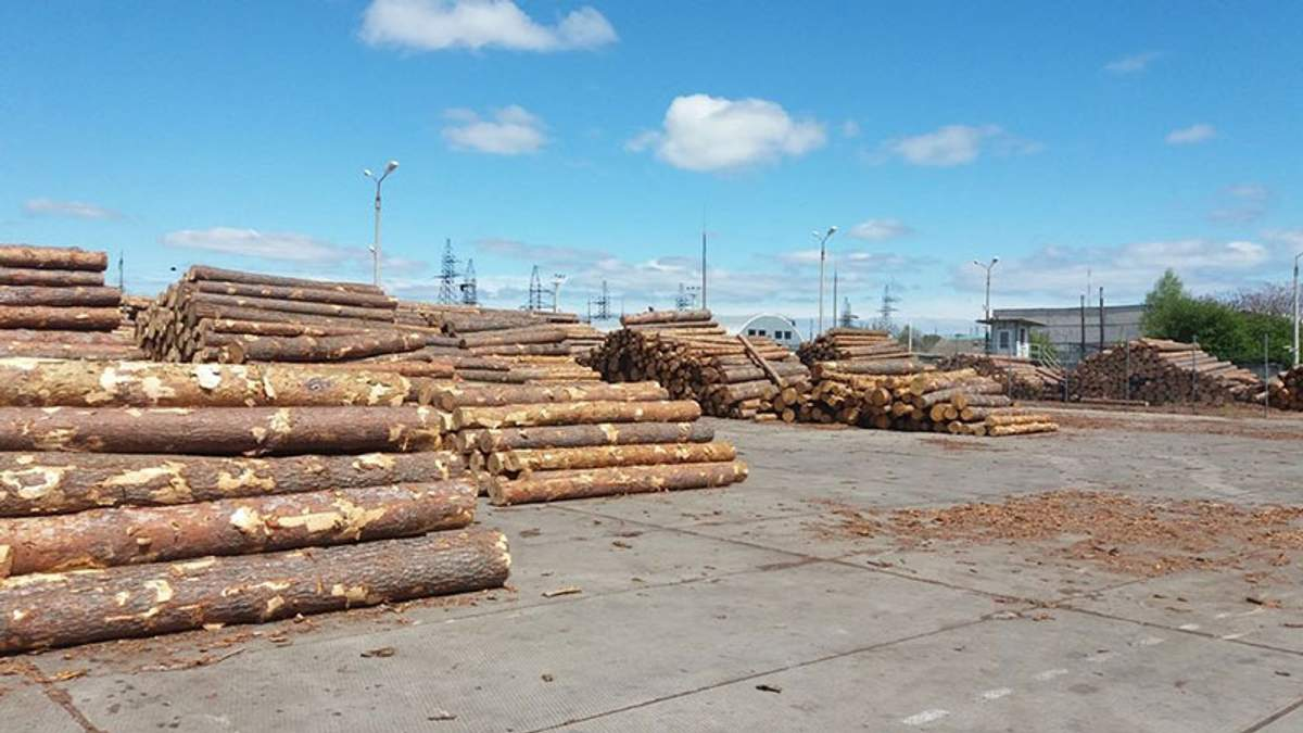 Партія деревини