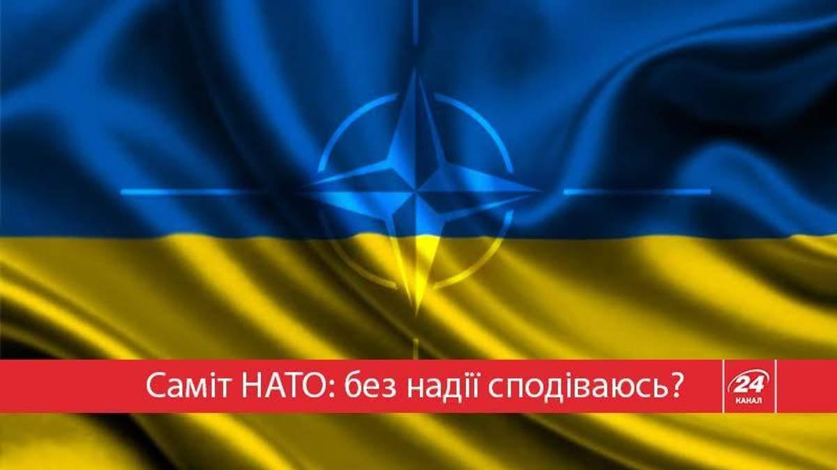 Насколько ближе стала Украина к НАТО?