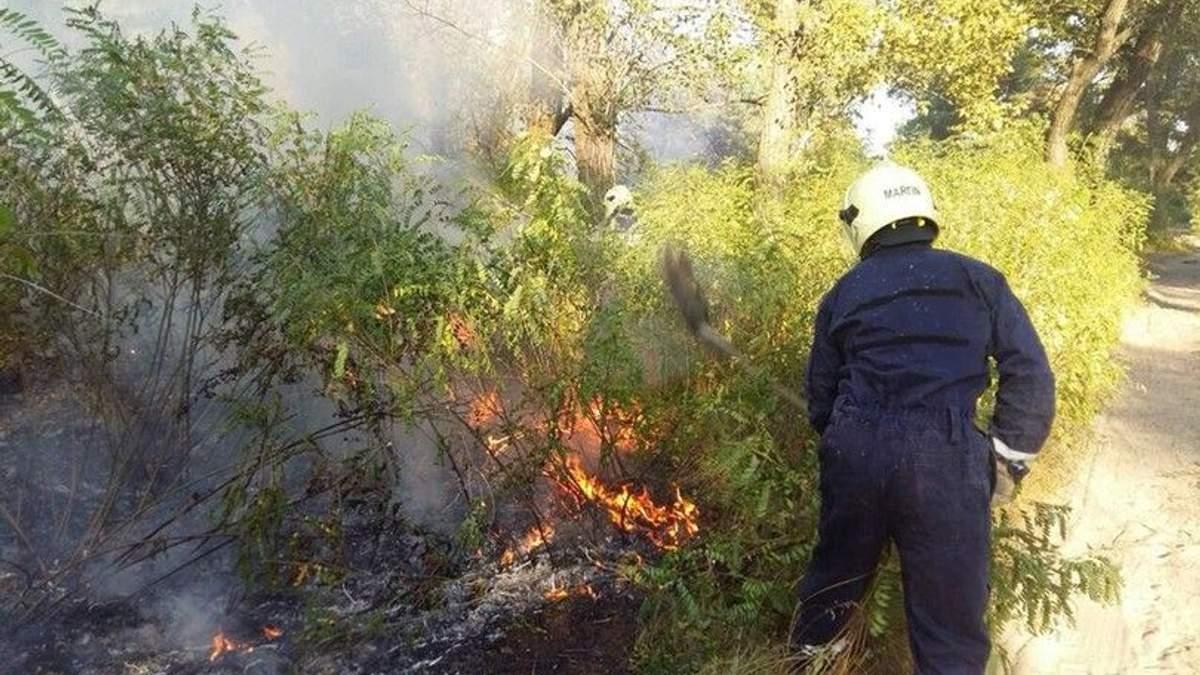 В Киеве горит Труханов остров