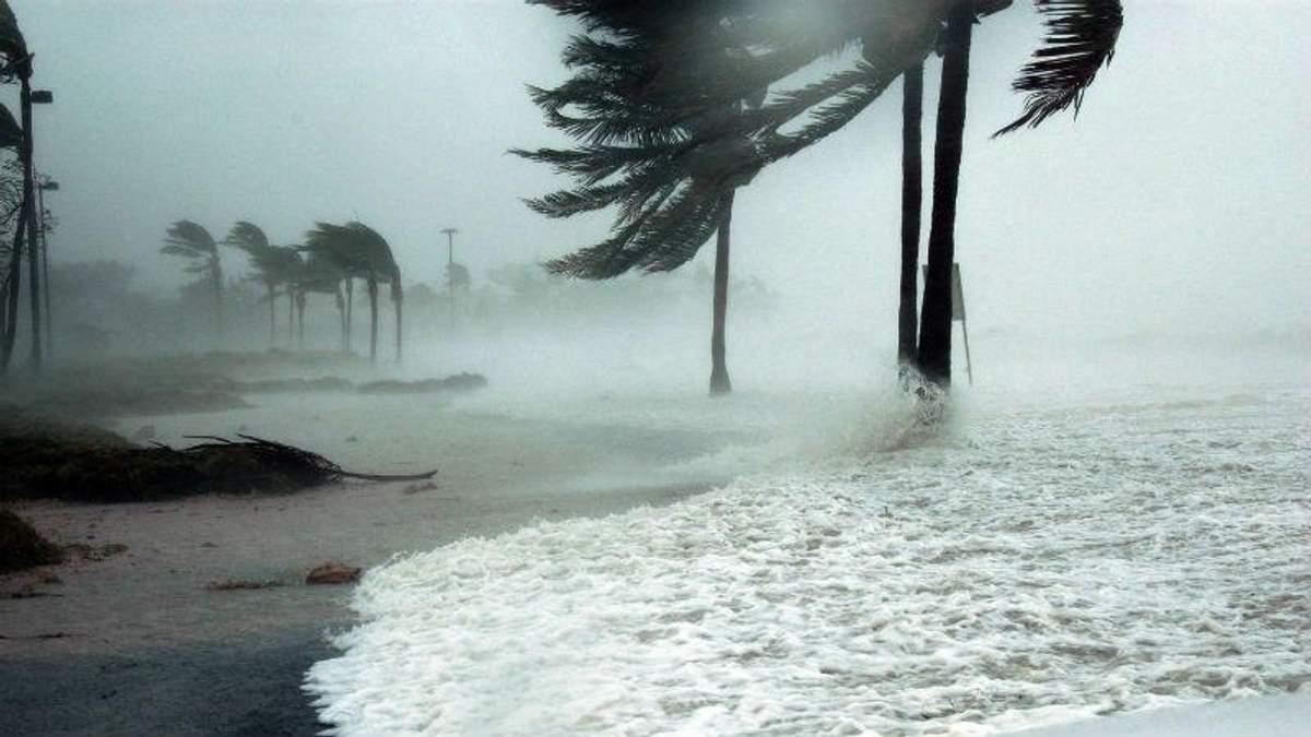 """Американец специально попал в эпицентр смертельного урагана """"Мэтью"""""""