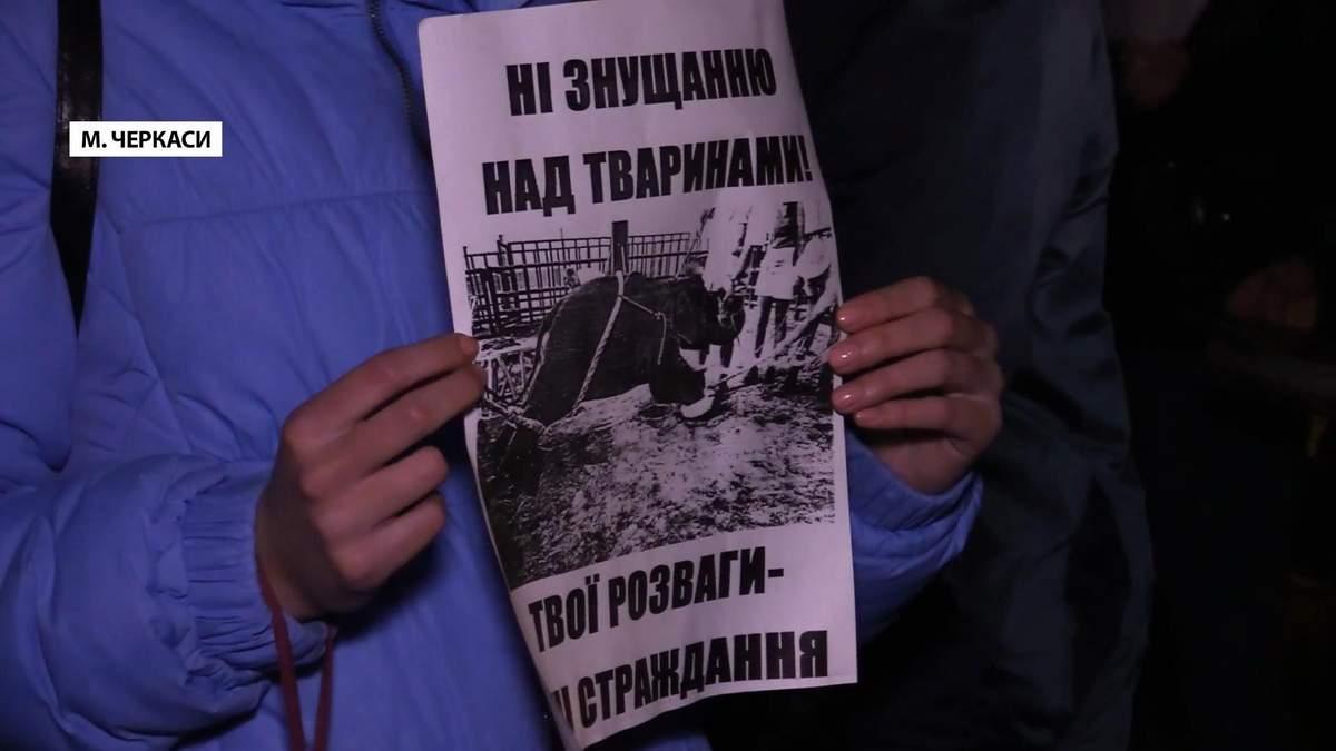 Черкасские зоозащитники протестуют против эксплуатации животных в цирках