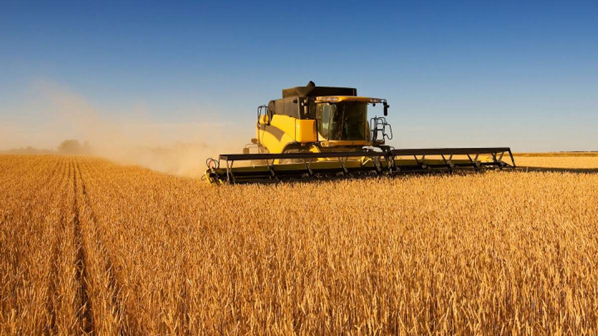Украина собрала рекордный урожай зерновых - 16 января 2017 - Телеканал новин 24