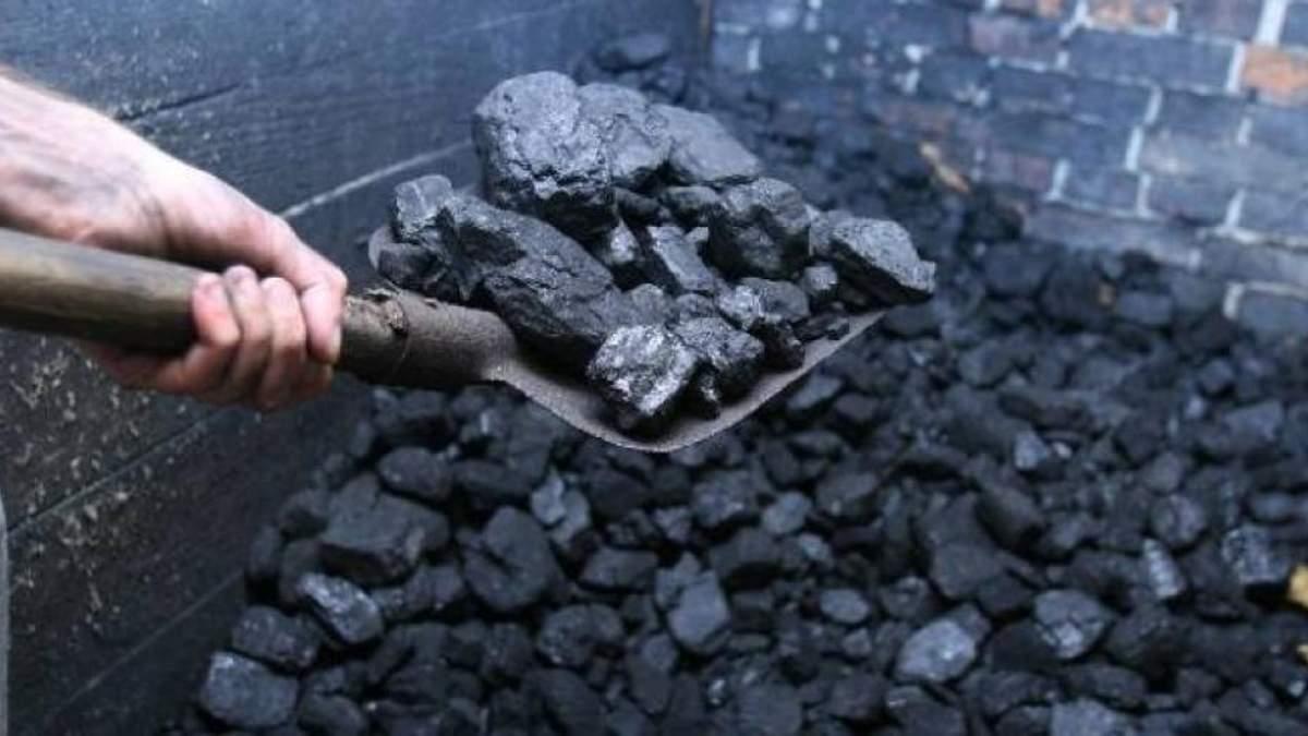 У Кабміні назвали єдину альтернативу вугіллю з Донбасу