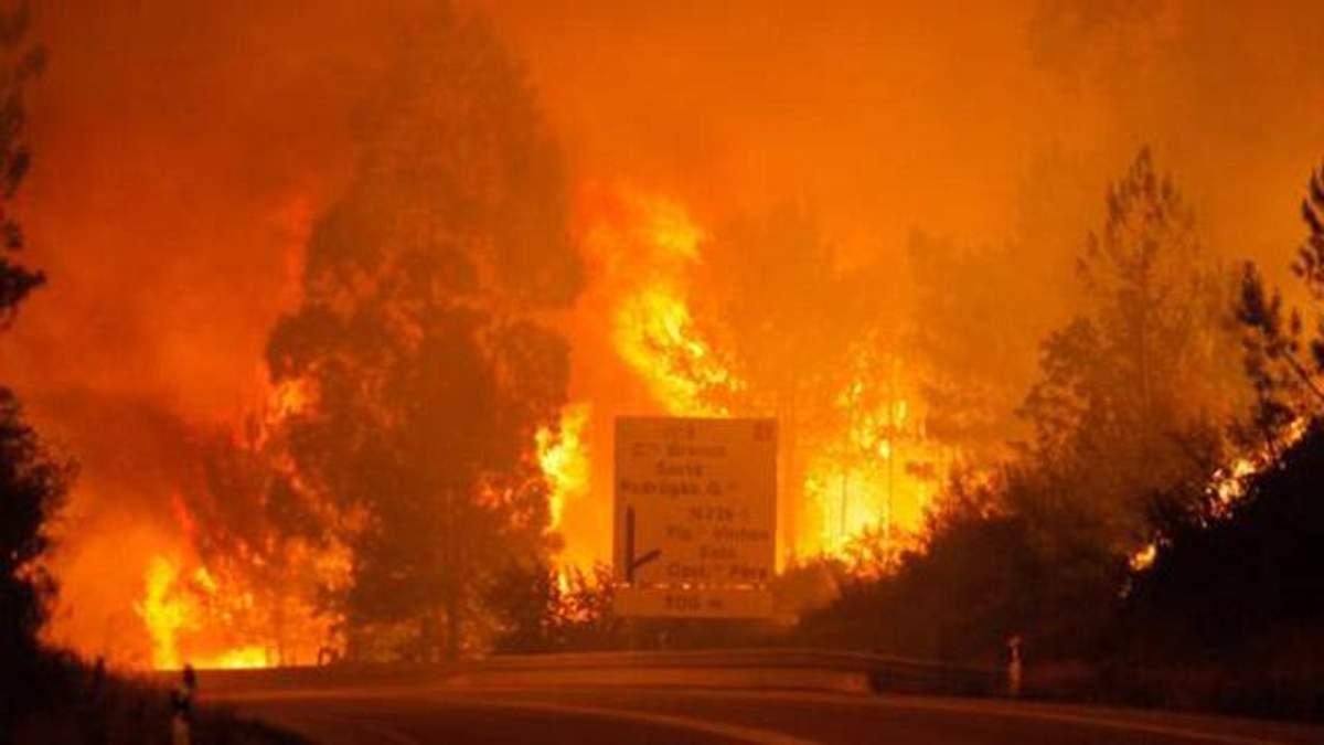 Масштабні пожежі у Португалії вже забрали 25 життів: фото і відео