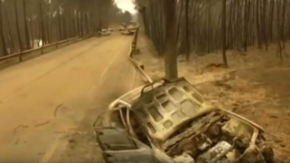 Спалена земля: з'явилось моторошне відео наслідків пожеж в Португалії