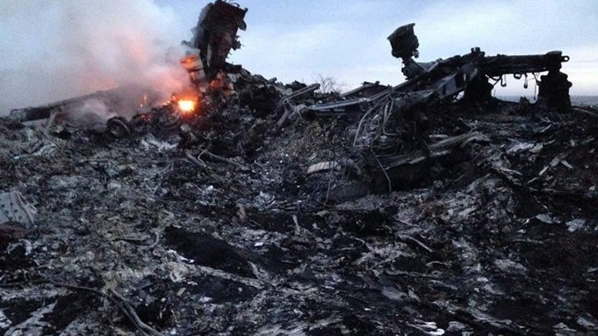 В ОРДО заявили, що призупинили розслідування катастрофи МН17