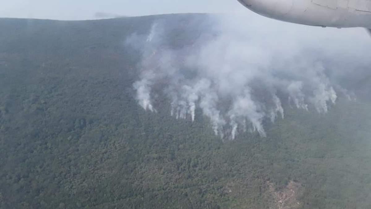 Украинские спасатели помогают тушить масштабные пожары в Черногории: появилось видео