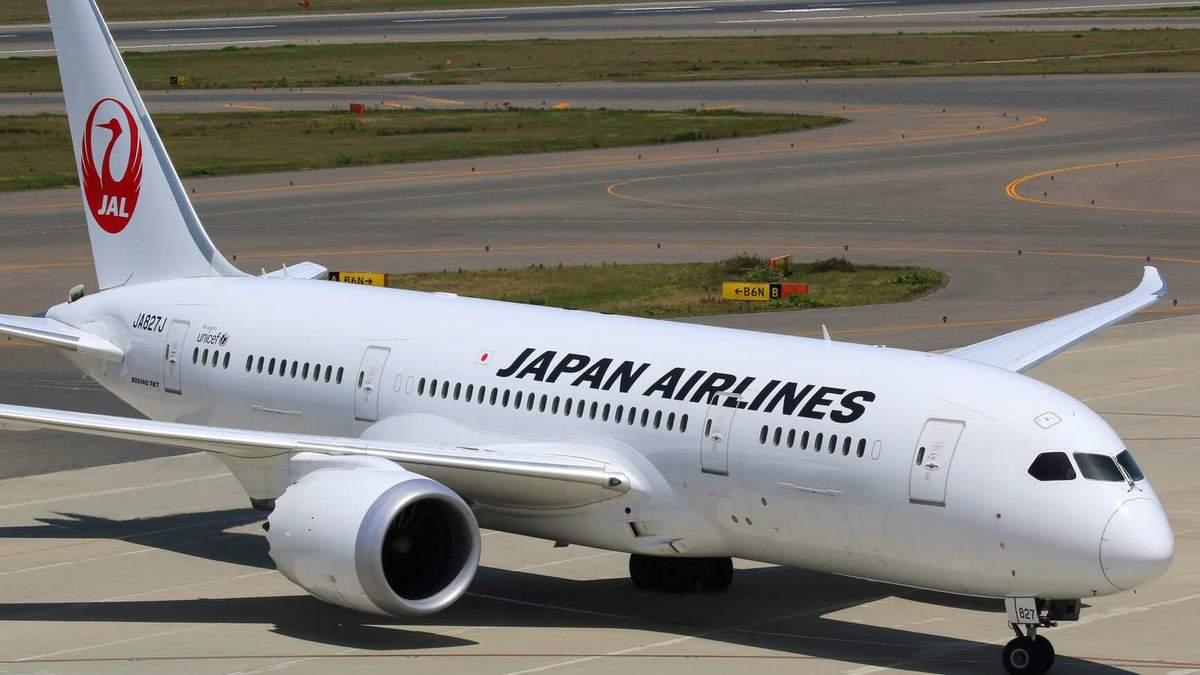 У Японії через птаха загорівся літак