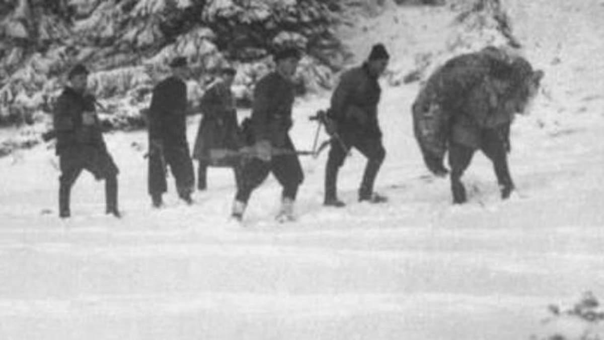 Как воин УПА Василий Билинчук приютил и воспитал осиротевшего медведя