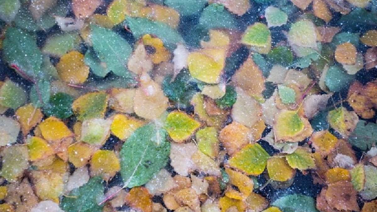Погода на 13 вересня в Україні: холод та дощі