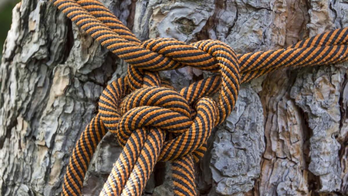 Женщина воспитывала чужого ребенка, привязав веревкой к дереву возле кладбища