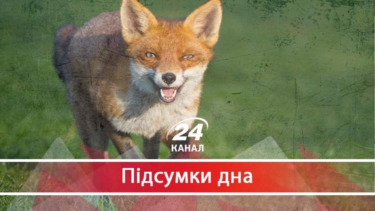 У Запорізькій обладміністрації вирішили оздоровити лисиць на 154 мільйони гривень - 25 сентября 2017 - Телеканал новин 24