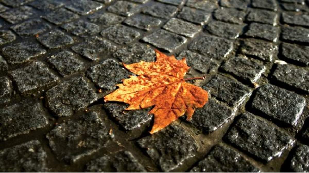 Погода 3 октября в Украине: холод с дождями