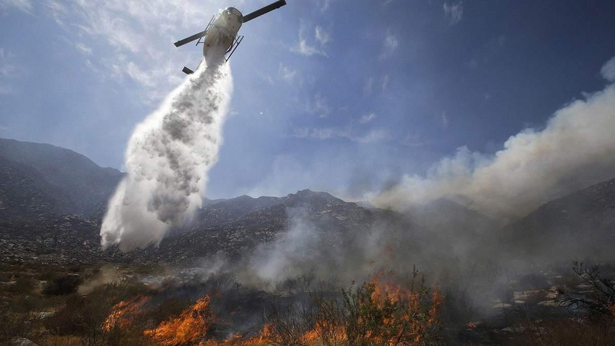 Масштабні лісові пожежі у Каліфорнії: науковець назвав причини