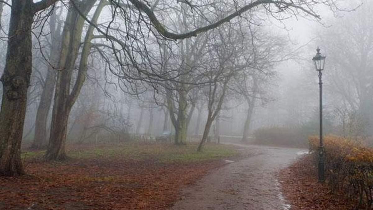 Прогноз погоды на 3 ноября в Украине