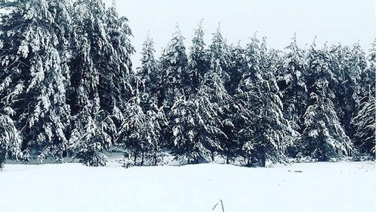 Сніг на Луганщині
