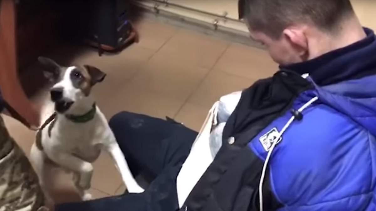 Службовий пес виявив 4 кілограма марихуани