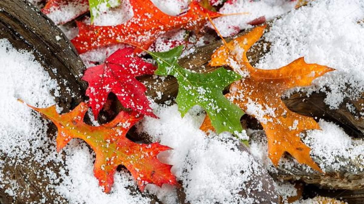 Погода в Украину 1 декабря местами будет довольно теплой