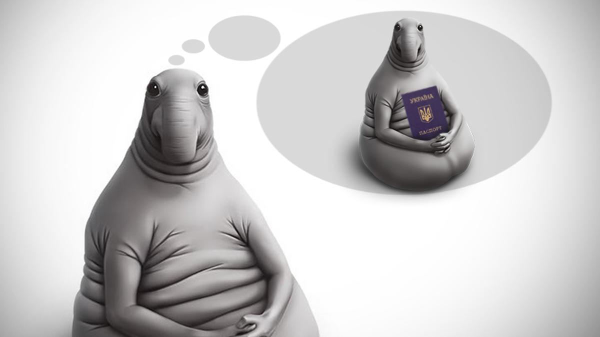 Биометрический паспорт в Украине: ажиотаж не утихает