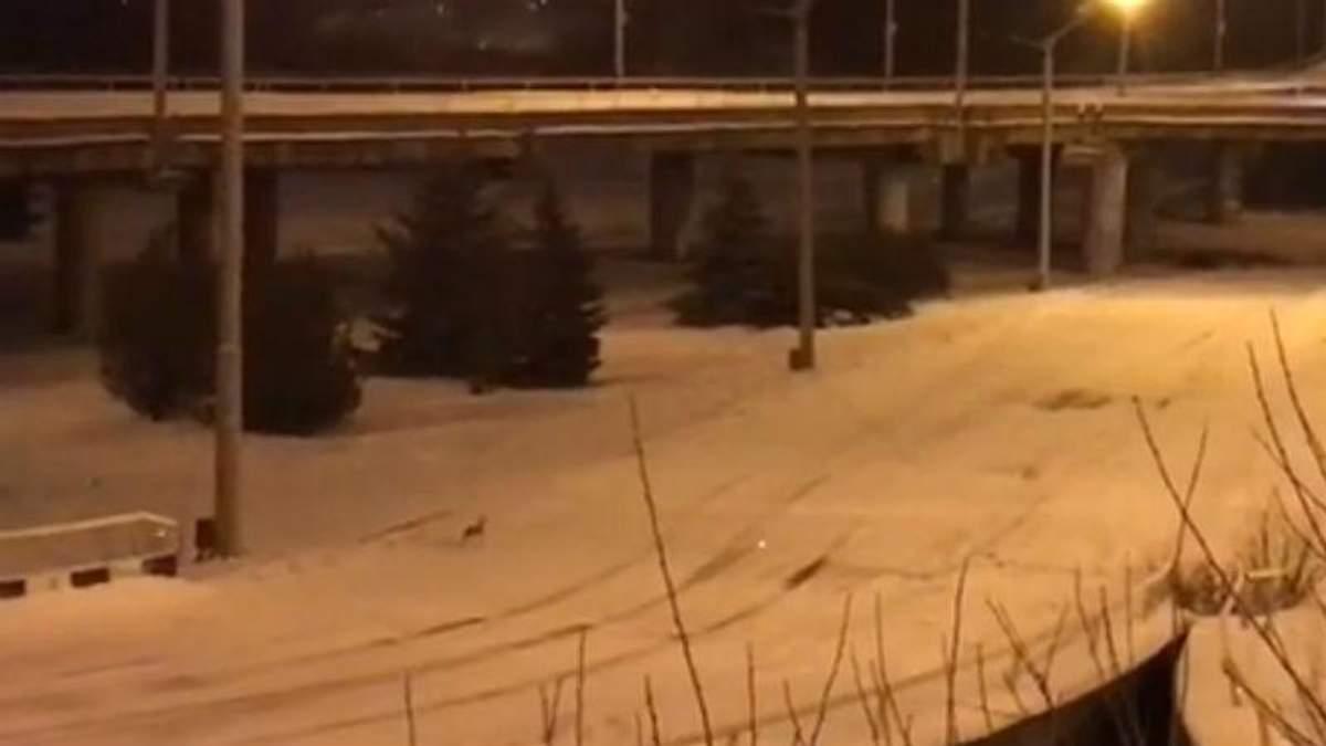 Журналіст показав свіже відео з окупованого Луганська
