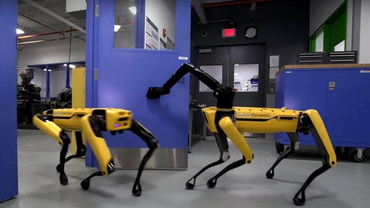 У роботів-собак появилися руки