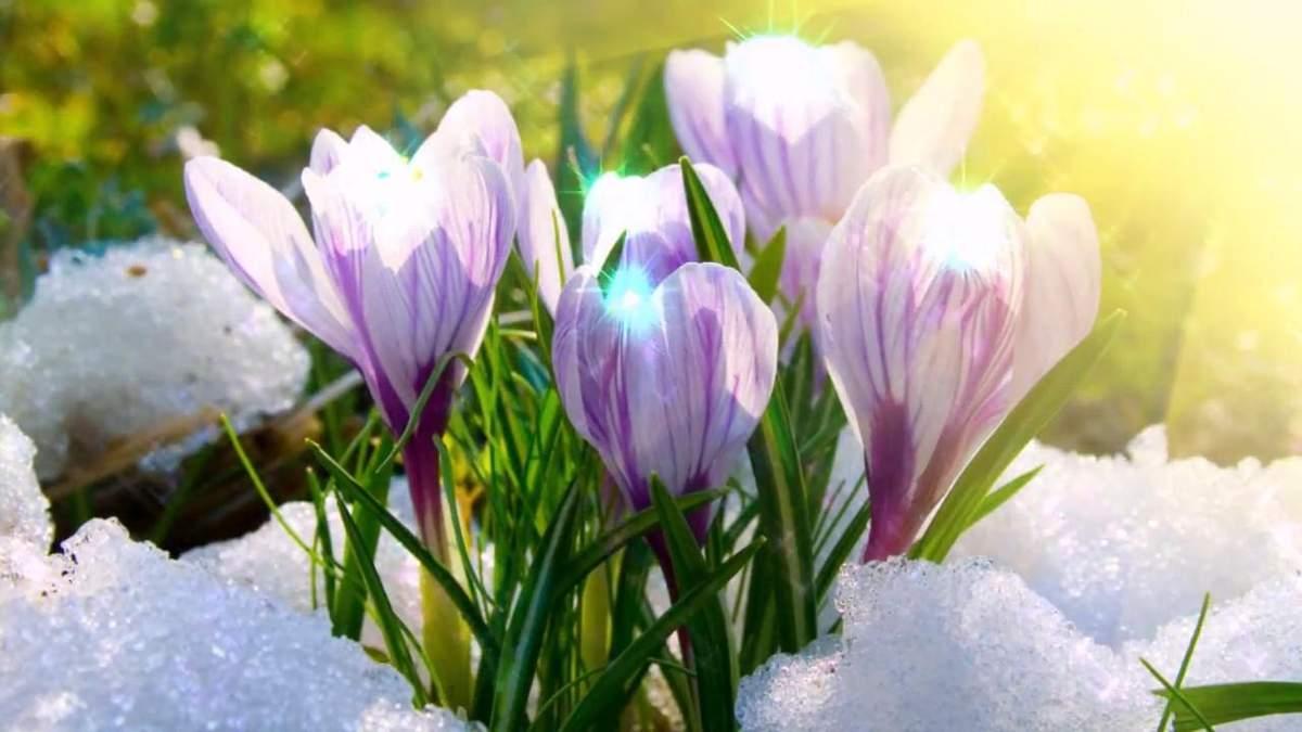 Когда в Украине наступит весна: прогноз