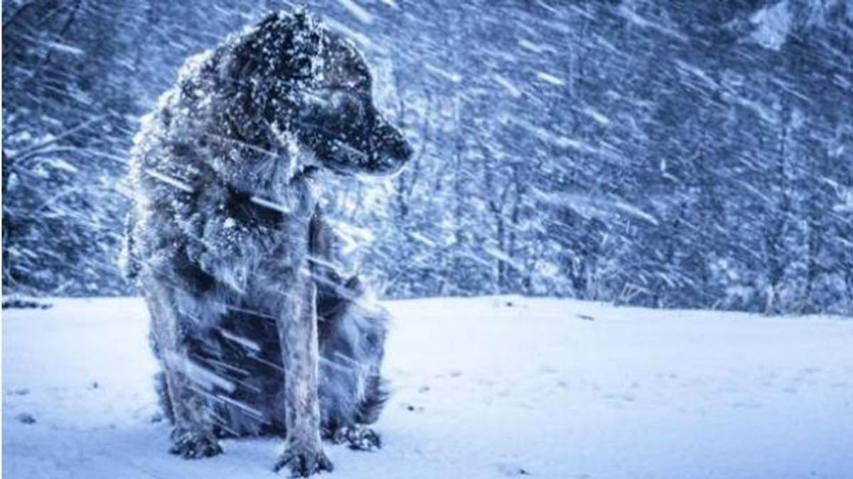 На вихідних Україну накриє ще один циклон – оголошено штормове попередження