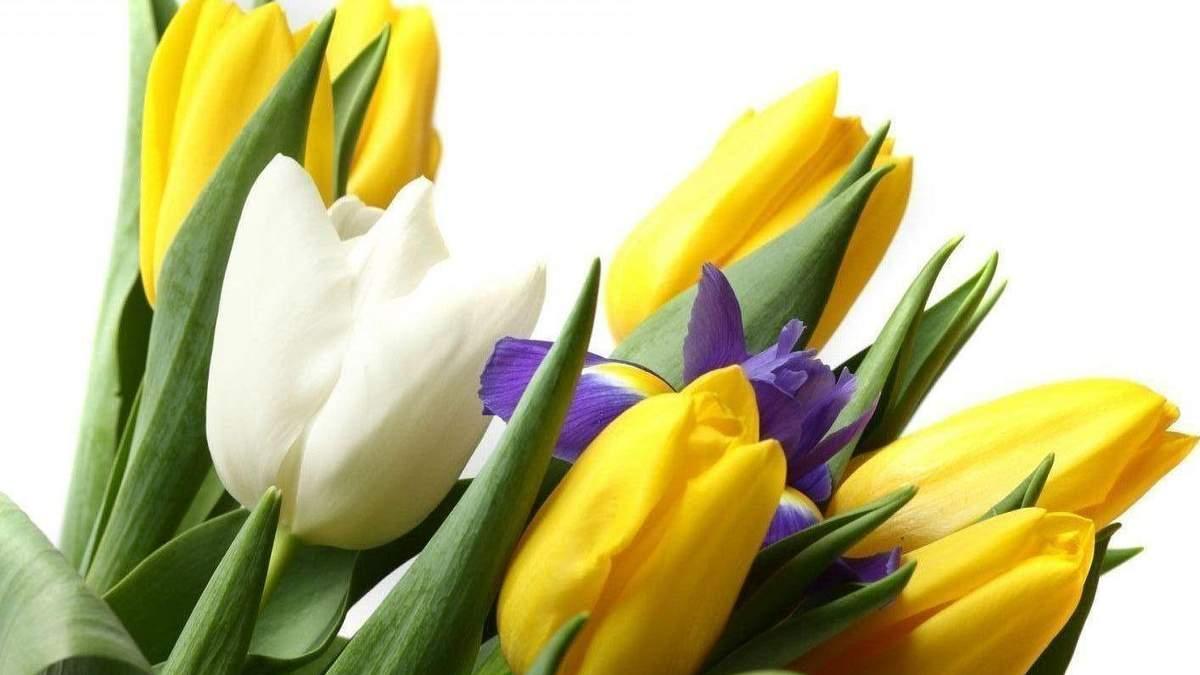 Что подарить девушке на 8 марта 2020 – подарки девушке на 8 марта