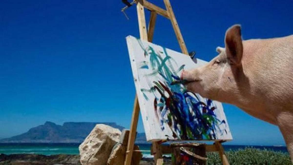 Поки в Україні дорожчає сало, у світі борються за права свиней