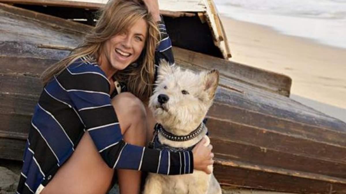 Дженніфер Еністон з собакою