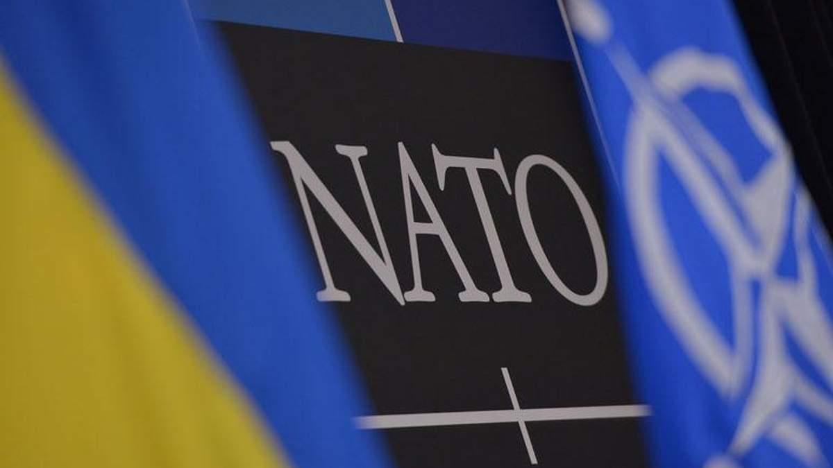"""Це проблема"":  екс-посол США пояснив, чому НАТО не хоче приймати Україну в альянс"