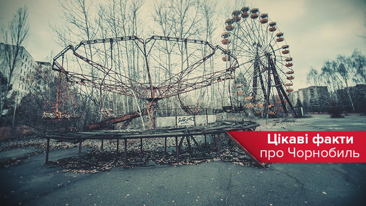 Чернобыль 2020 – факты об аварии на ЧАЭС, животных и городе